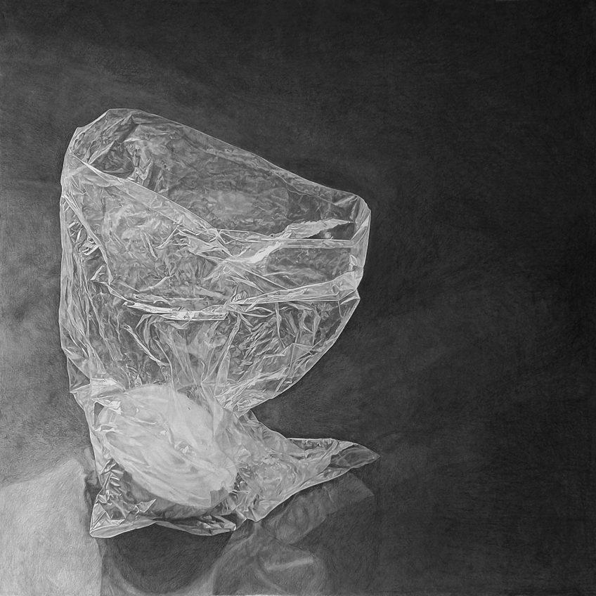 ● שקית אוכל (ובה חצי בצל) – (Plastic bag (with half onion